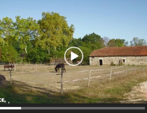 Le Maraîchage Asin • France 5